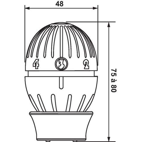 giacomini t te thermostatique giacomini r470. Black Bedroom Furniture Sets. Home Design Ideas